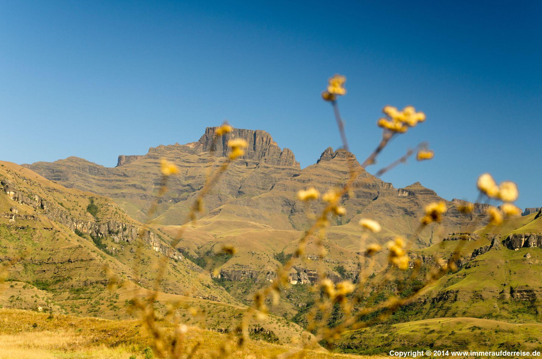 Im Champagner Tal in den zentralen Drakensbergen