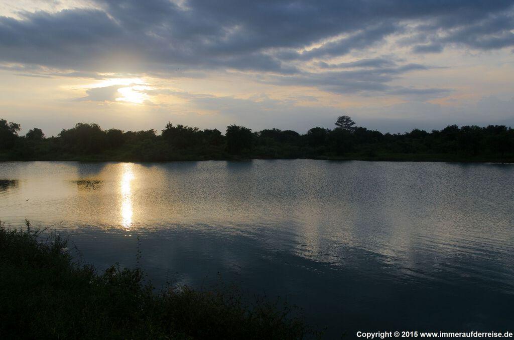 Untergehende Sonne im Udawalawa Nationalpark