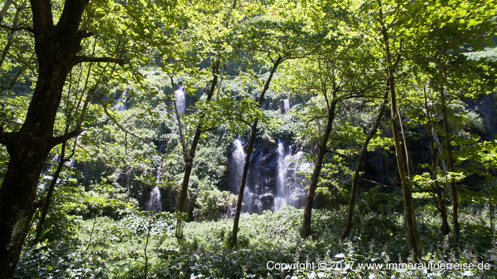 La Réunion Wasserfall - www.immeraufderreise.de