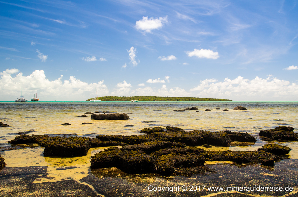 Ile aux Aigrettes Mauritius - www.immeraufderreise.de