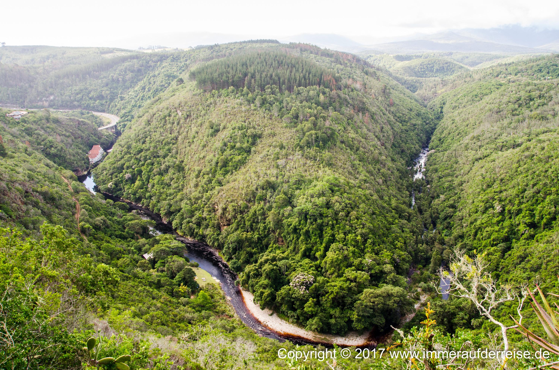 Wilderness und ein Hauch der Garden Route