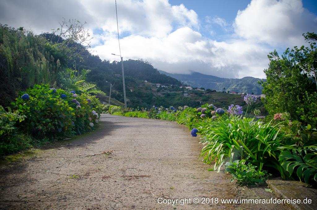 Straße mit Blumen bei Porta da Cruz Madeira