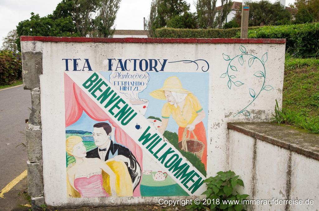 Willkommen Tea Factory