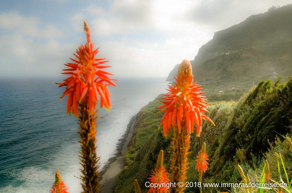 Westküste Madeira